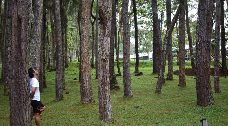 Eden Nature Park - Davao City, Philippines