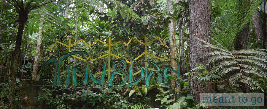 Tinubdan - Eden Nature Park, Davao City