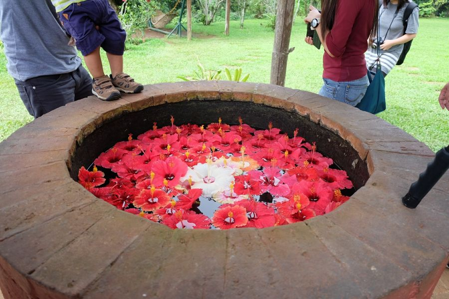 Wishing Well at Bahay Ni Lola, Eden Nature Park, Davao City