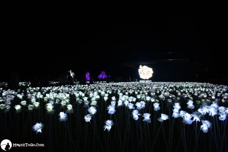 10000-Roses Cordova, Cebu City