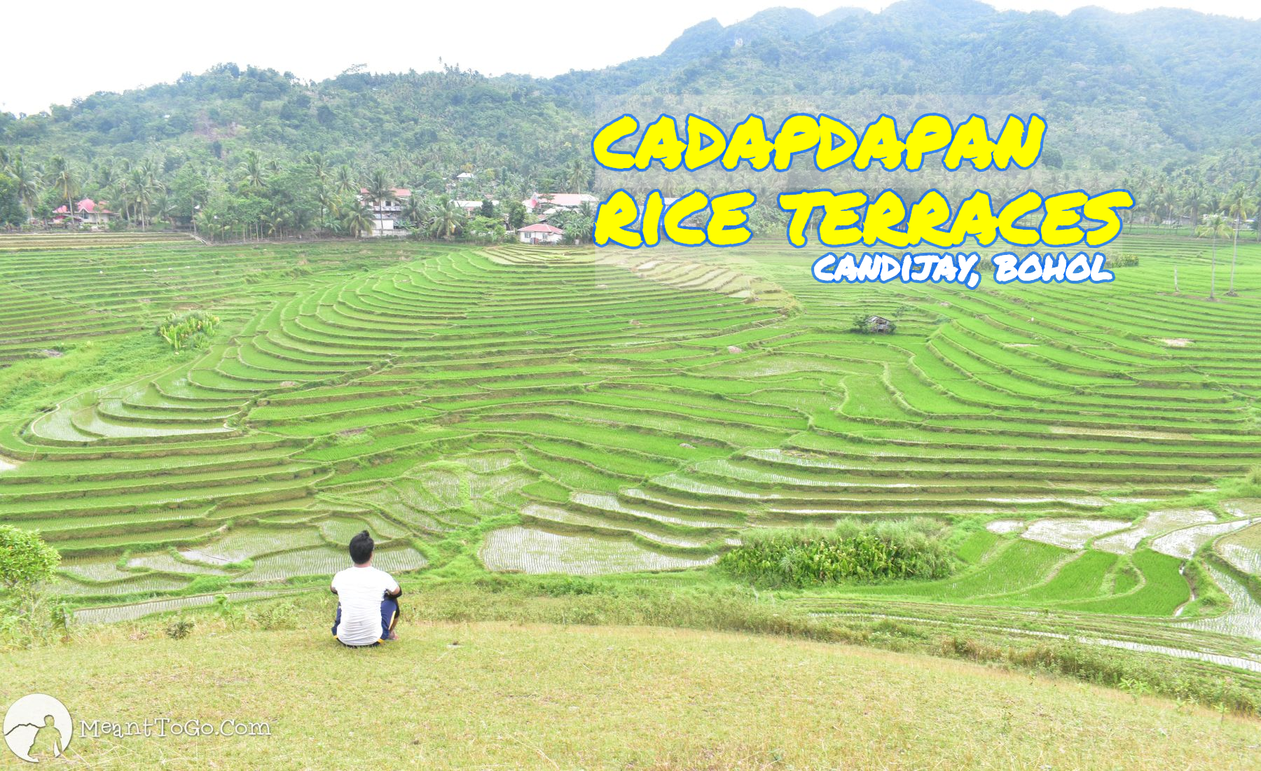 cadapdapan rice terraces, candijay, bohol