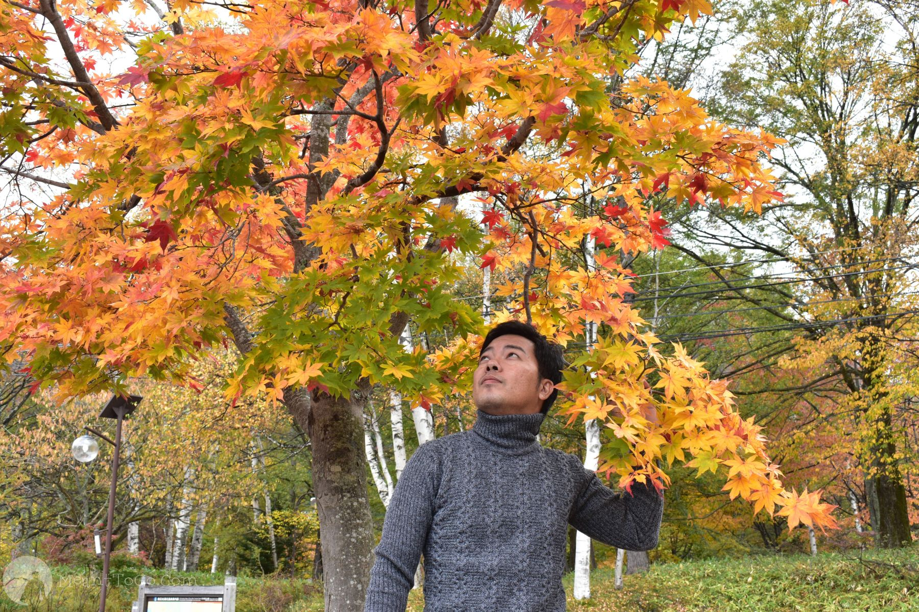 Nikko, Tochigi, Japan during Autumn