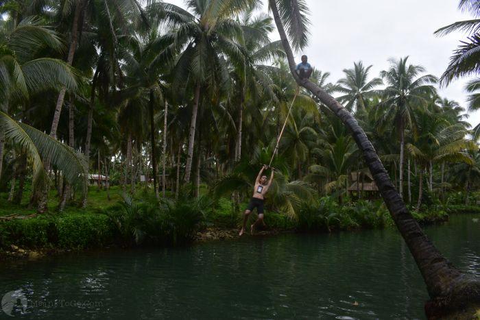 Coconut Swing, Maasin River, Siargao