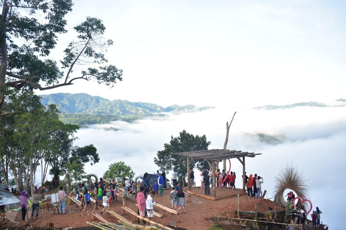 Calamba Farm, Maragusan