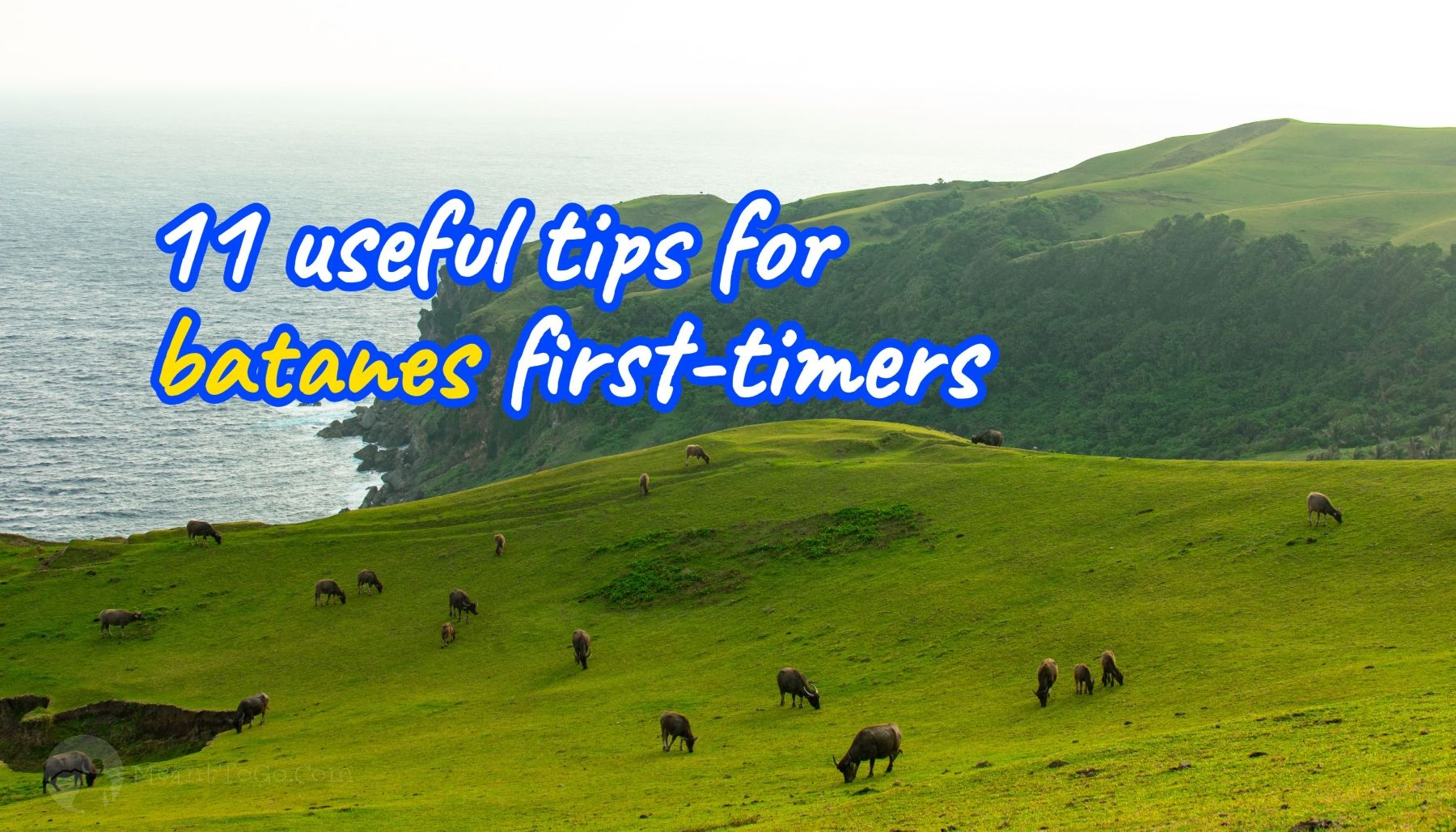 batanes travel tips